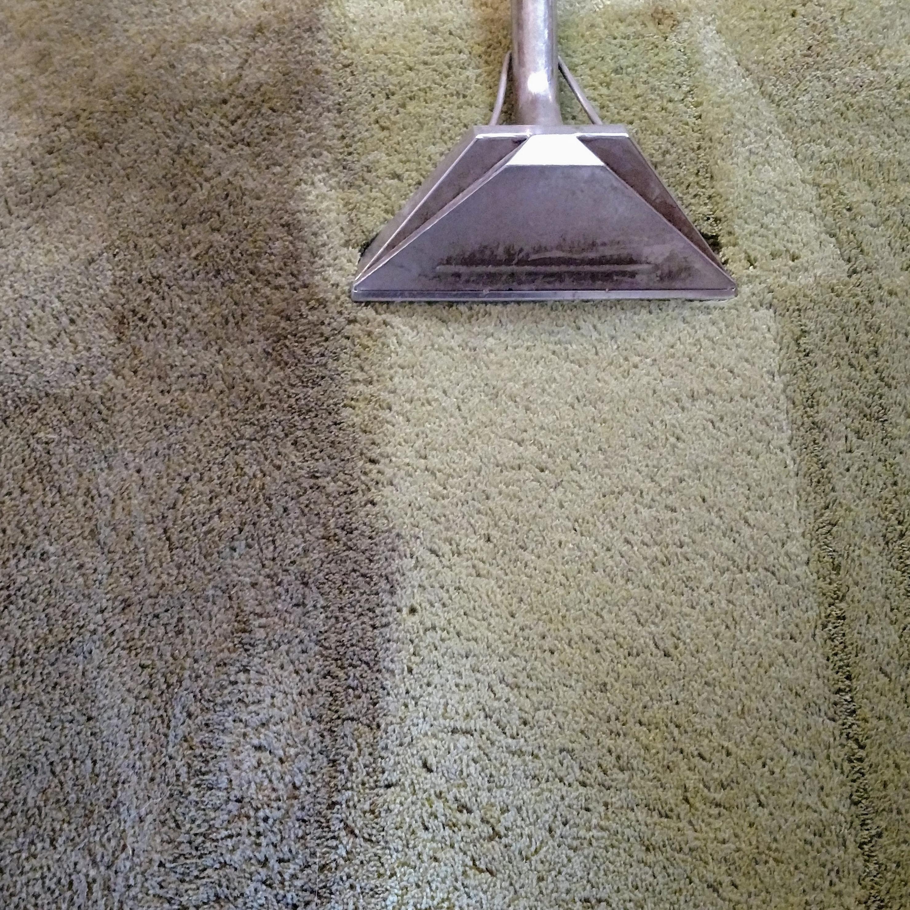 Carpet & Floor Cleaning Gallery